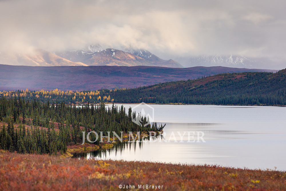 Fall colors along Wonder Lake, Denali National Park. © John McBrayer