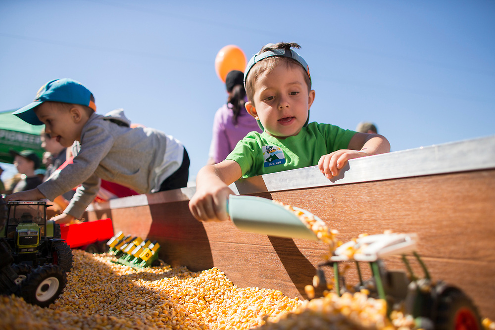 Cole Brestovansky (4) plays in some corn at the Breakfast on the Farm event near Shedden, Ontario, Saturday, June 24, 2017.<br /> Farmers Forum/ Geoff Robins