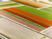 Nederland, Noord-Holland, Gemeente Zijpe, 16-04-2012; Zijpe- en Hazepolder. Bloembollenvelden in Polder E, ten noorden van Schagen..Polder in the north of the province Noord-Holland, dating from the 16th century. Flower bulb fields and cultivation..luchtfoto (toeslag), aerial photo (additional fee required);.copyright foto/photo Siebe Swart