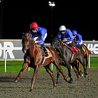 Tamarkuz and Dane O'Neill winning the 7.10 race