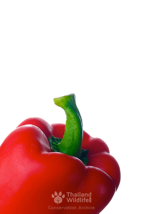 Bright red bell pepper with green stem against a white background
