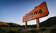 AHU17 - Puketawa - Field Day
