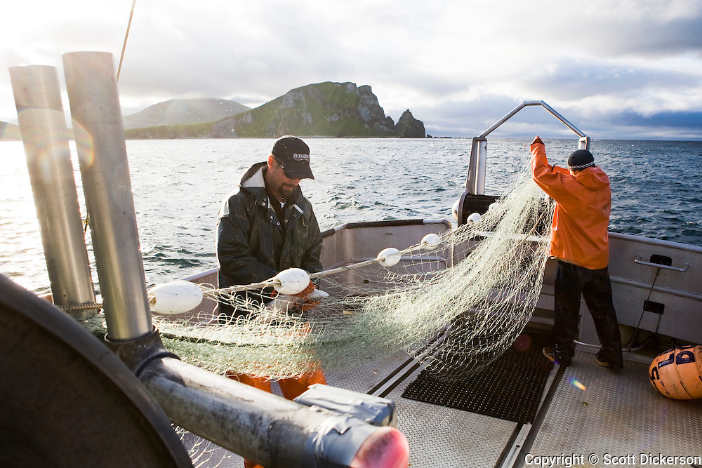 Buck Laukitis and Keith Bell work the gillnet while commercial sockeye salmon fishing in the Eastern Aleutian Islands, area M, region aboard the F/V Lucky Dove.