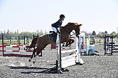 26 - 09th Apr - Senior Affiliated Show Jumping