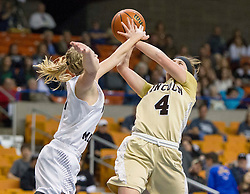 Lincoln guard Hope Bray (4) is fouled by North Marion forward Brittany Sigley (4) during a first round game at the Charleston Civic Center.
