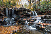 See lush rhododendron groves and fall foliage colors along Jonathan Run stream on the Kentuck Trail, near Kentuck Campground, in Ohiopyle State Park, Pennsylvania, USA. Visit Ohiopyle State Park for peak fall colors starting in late October, in Fayette County. Ohiopyle's Kentuck Campground is just 17 minutes from Fallingwater, the famous Kaufmann Residence designed by Frank Lloyd Wright. Ohiopyle SP is bisected by Pennsylvania Route 381, about 90 minutes southeast of Pittsburgh via car.