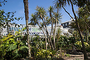 Gyllyngdune Gardens, Falmouth, Cornwall, England, UK