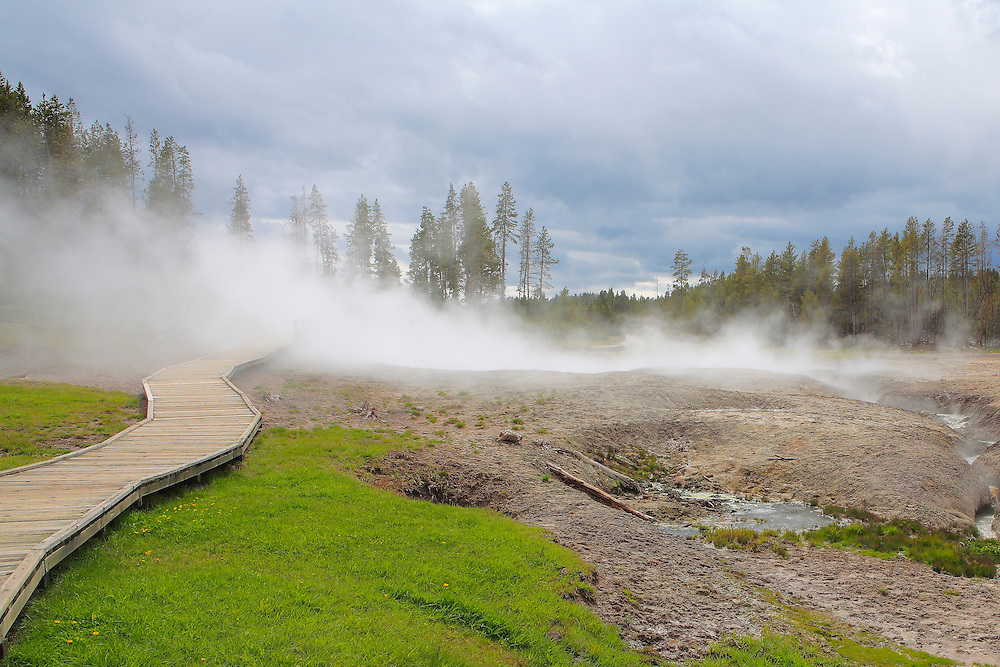 Steaming Thermal Geyser Pools- Yellowstone National Park