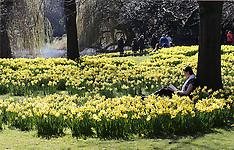 MAR 07 2014 Warm weather in London