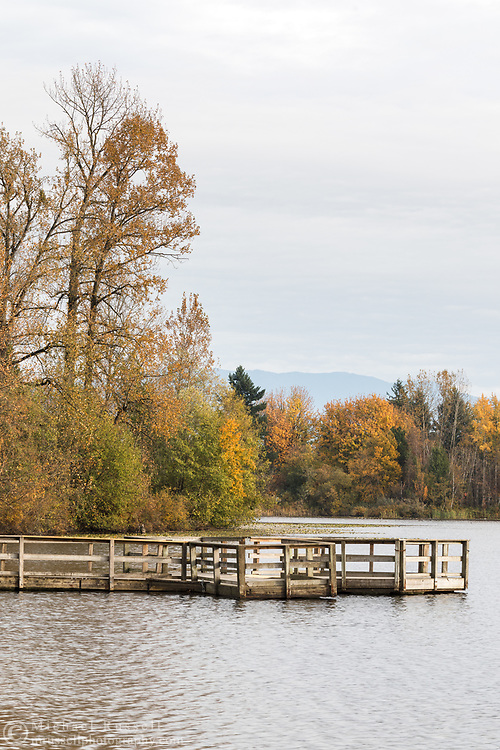 The dock at Mill Lake Park in Abbotsford, British Columbia, Canada. The dock is next to the lake's main boat launch and is mostly used for wildlife viewing and fishing.