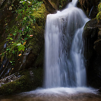 A small cascade located in the middle of Dark Hollow Falls, Shenandoah National Park