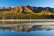 USA, Alaska, Wrangell-St Elias National Park, Fireweed Mt reflected in a tundra pond at the peak of fall colors