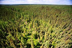 CANADA ALBERTA FORT MCMURRAY 20JUL09 - Aerial view of the Boreal forest north of Fort McMurray, northern Alberta, Canada...jre/Photo by Jiri Rezac / GREENPEACE..© Jiri Rezac 2009