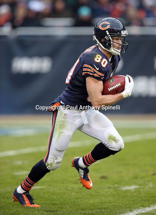 Chicago Bears punt returner Marc Mariani (80) returns a punt 47 yards to the Bears 47 yard line during the NFL week 17 regular season football game against the Detroit Lions on Sunday, Jan. 3, 2016 in Chicago. The Lions won the game 24-20. (©Paul Anthony Spinelli)