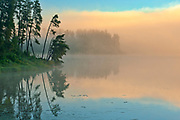Fog at sunrise on Isabel Lake<br />