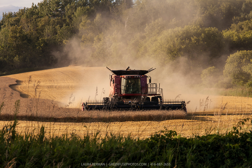 A red Case 8120 combine harvesting a field of grain.