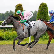 Grecian and Jim Crowley winning the 6.40 race
