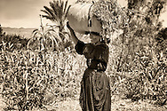 Berber woman carrying grass on her head.