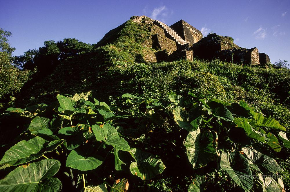 Altun-Hà Mayan ruins, Sun Temple.