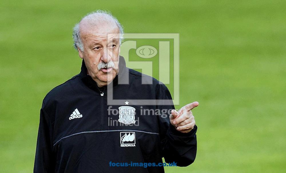 Vicente del Bosque, head coach of Spain during training at Aktivpark Montafon Stadion, Schruns<br /> Picture by EXPA Pictures/Focus Images Ltd 07814482222<br /> 26/05/2016
