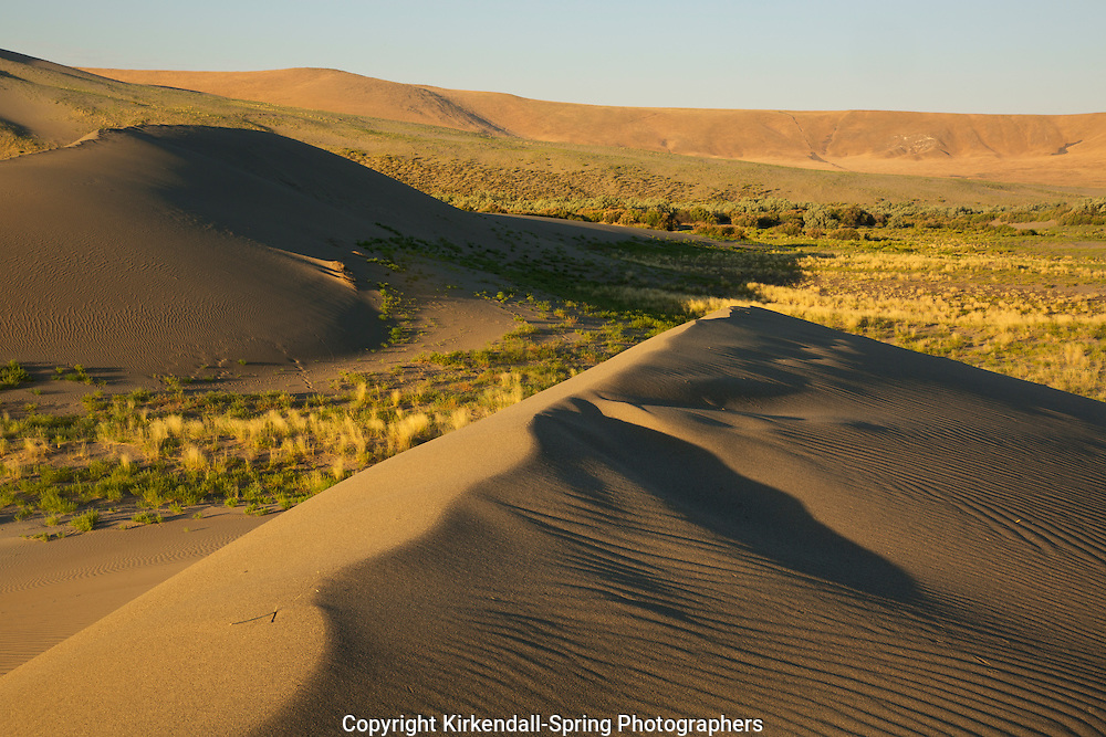 ID00670-00...IDAHO - Early morning light on the sand dunes at Bruneau Dunes State Park.