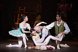 © Licensed to London News Pictures. 22/07/2014. London, England. L-R: Shiori Kase as Swanilda, Jung ah Choi as Coppélia Doll, Michael Coleman as Dr Coppélius and Yonah Acosta as Franz. Working stage rehearsal of Coppélia with the English National Ballet at the London Coliseum. With Shiori Kase as Swanilda and Yonah Acosta as Franz. Choreography by Ronald Hynd after Marius Petipa to music by Léo Delibes. Music performance by the Orchestra of the English National Ballet conducted by Gavin Sutherland. Photo credit: Bettina Strenske/LNP