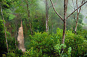 Pura Vida Ecolodge Nature Reserve, Costa Rica