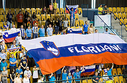 Florijani, supporters of Slovenia during handball match between National Teams of Slovenia and Norway in Play Off Phase 2 of 2017 Men's World Championship Qualifications, on June 11, 2016 in Arena Zlatorog, Celje, Slovenia. Photo by Vid Ponikvar / Sportida