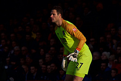 BOURNEMOUTH, ENGLAND - Sunday, November 25, 2018: AFC Bournemouth's goalkeeper Asmir Begovic during the FA Premier League match between AFC Bournemouth and Arsenal FC at the Vitality Stadium. (Pic by David Rawcliffe/Propaganda)
