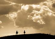 On horseback...cowboys working the range in Colorado.