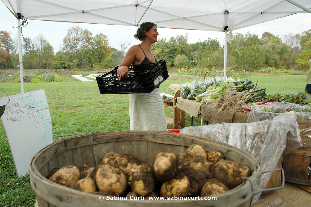 Farm Girl Farm CSA, sustainable community supported agriculture. Laura Meister, pick up day harvest.