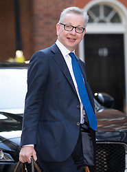 © Licensed to London News Pictures. 22/07/2019. London, UK. Environment Secretary Michael Gove arrives for Prime Minister Theresa May's farewell drinks reception at Downing Street.  Voting in the Conservative party leadership election ends today with the results to be announced tomorrow. Photo credit: Peter Macdiarmid/LNP
