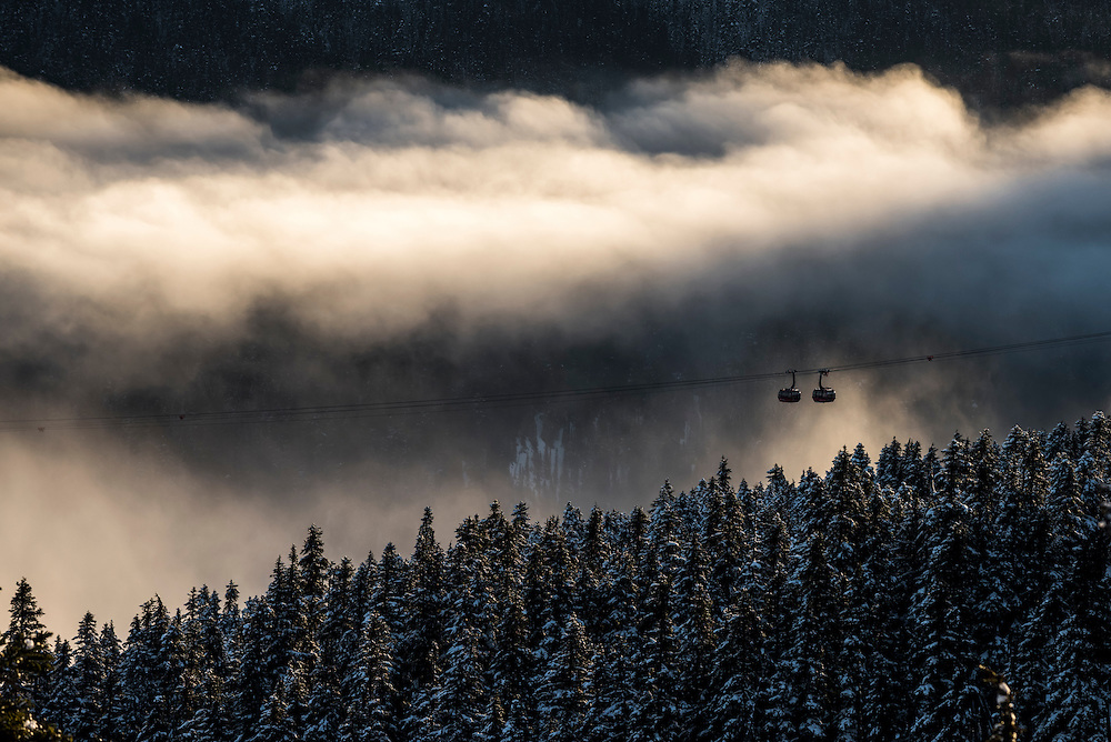 Whistler Blackcomb's Peak to Peak gondola emerges from a luminous mist, draped over the forested slopes of Whistler Mountain.