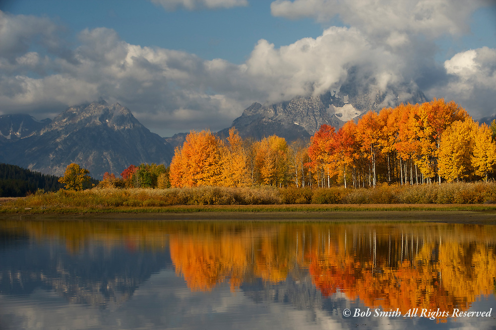 Vibrant fall colors at Oxbow Bend on the Snake River in Grand Teton National Park, WY.