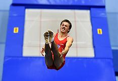 2015 - World Championships Trampolin - DMT - Tumbling