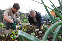 Man with learning disability with care staff planting on allotment