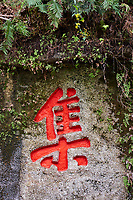 Chine, Province du Sichuan, Leshan, mont Emei, site du Grand Bouddha de Leshan, calligrahie chinoise // China, Sichuan province, Emei mount, Leshan, giant Buddha site, chinese calligraphy