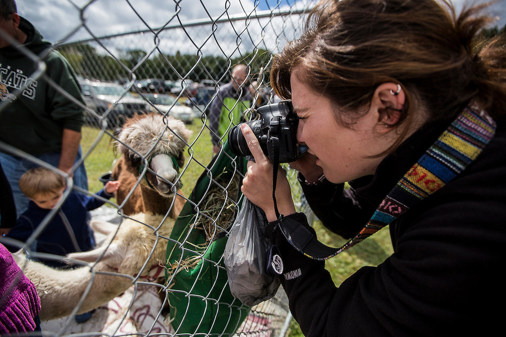 Sophomore photojournalism student Sophia Vancouver takes pictures recreationally of the alpaca at Pawpaw Festival on Saturday. Photo by Katelyn Vancouver