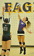 Elyria Catholic High School at Avon High School varsity volleyball on August 28, 2013. Image © David Richard and may not be copied, posted, published or printed without permission.