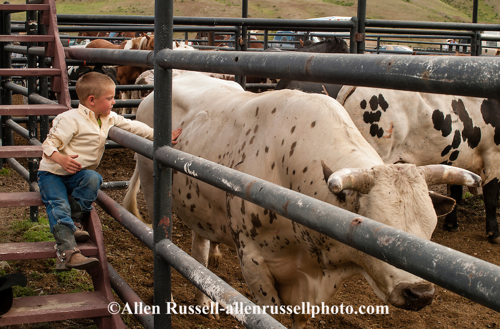 Kids, children, boy, cowboy, rodeo, bucking bull, Gardiner, Montana