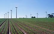 AYBR17 Onshore wind turbines West Somerton Norfolk England