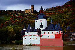 A castle on the Rhine River.