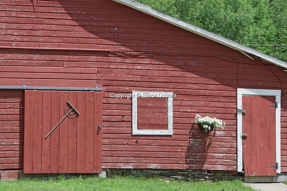 barn with petunias and antique rake