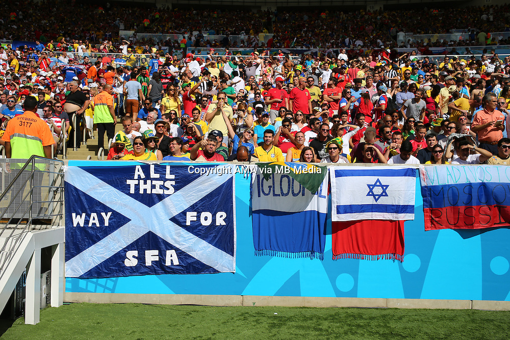 A flag of Scotland amongst the crowd