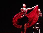 Furia Flamenca Dance Company