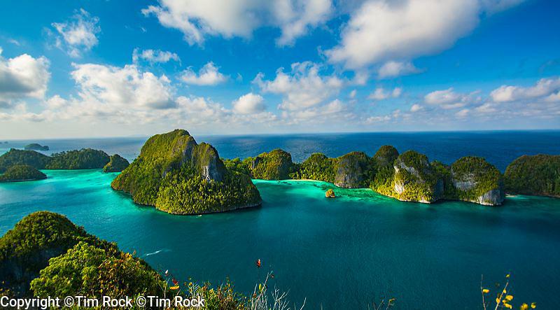 Raja Ampat 2015 (Aug-Sept), West Papua, Indonesia Raja Ampat 2015 (Aug-Sept), West Papua, Indonesia