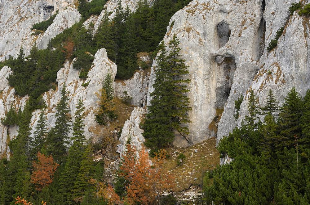 Holes carved by nature in limestone rock, National Park Piatra Craiului, Transylvania, Southern Carpathians, Romania