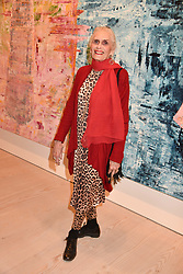 Daphne Selfe at a preview of an exhibition of art by Sassan Behnam-Bakhtiar entitled 'Oneness Wholeness' held at the Saatchi Gallery, Duke of York's HQ, King's Rd, London, England. 14 May 2018.