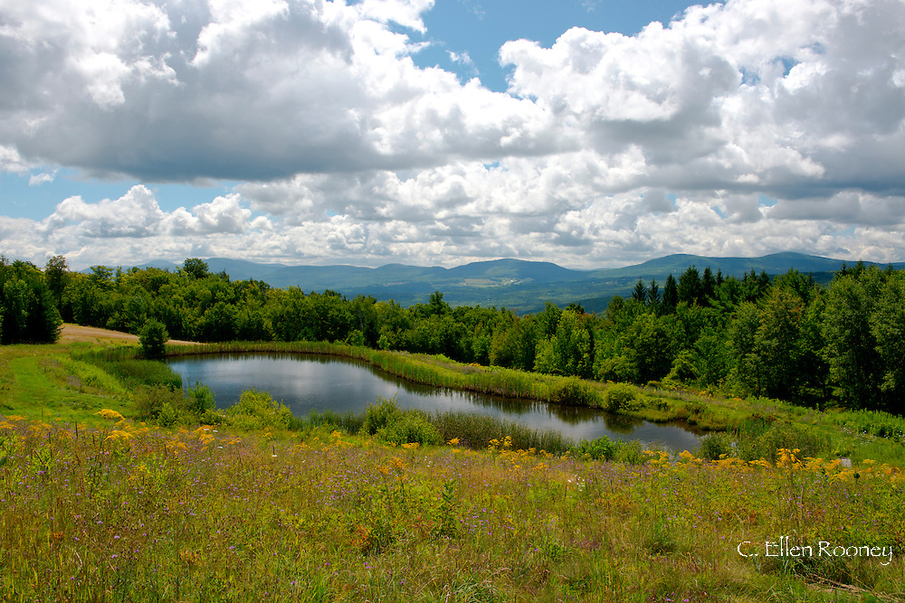 A view over a pond toward the Catskill Mountains from Preston Hollow, New York, U.S.A.