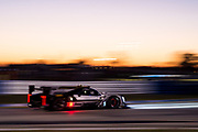 March 16-18, 2017: Mobil 1 12 Hours of Sebring. 5 Mustang Sampling Racing, DPi, Joao Barbosa, Filipe Albuquerque, Christian Fittipaldi